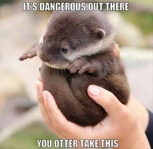 otterlink